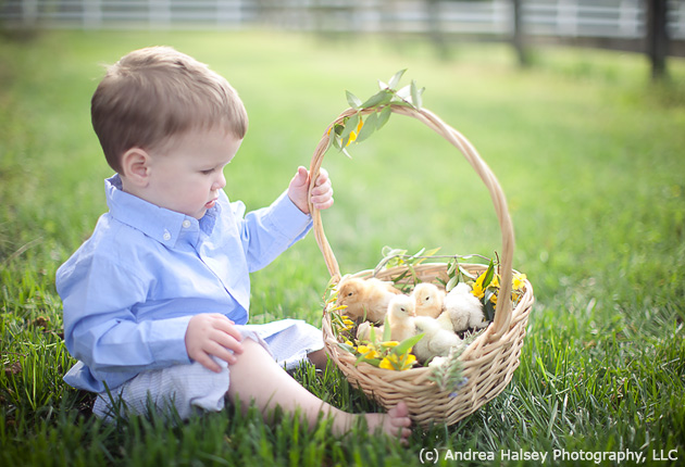 Pictures Rhcom Month Idea Baby Easter Photo Shoot Spring Photography