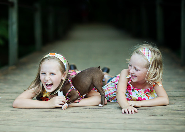Adding Pets To Family Portrait Sessions