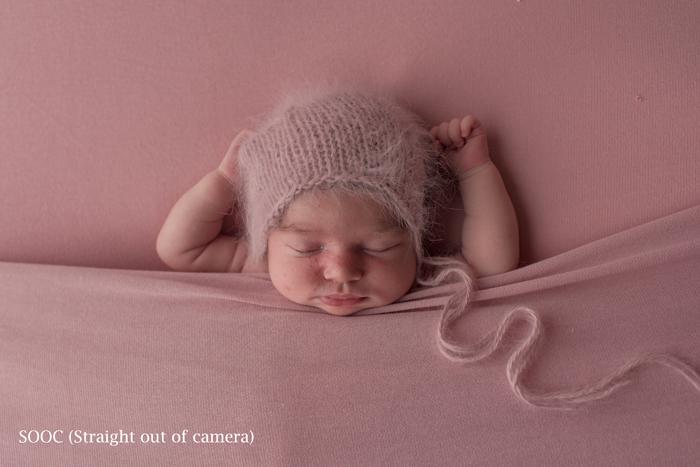 newborn portraits archives national association of professional