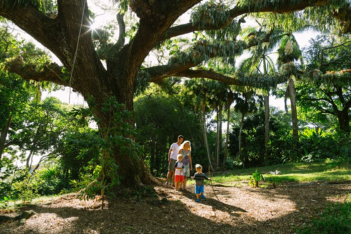 Little-Bird-Photography-Hawaii-Nuuanu-Park-family-photography-01