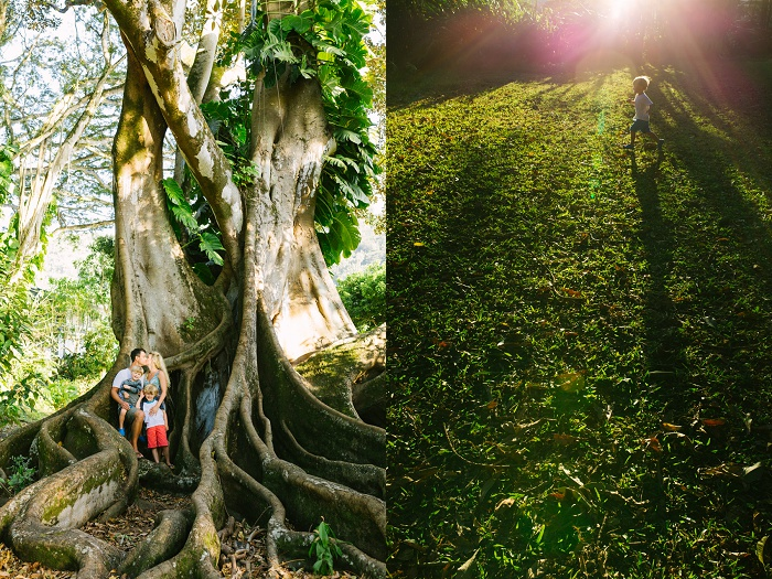 Little-Bird-Photography-Hawaii-Nuuanu-Park-family-photography-03