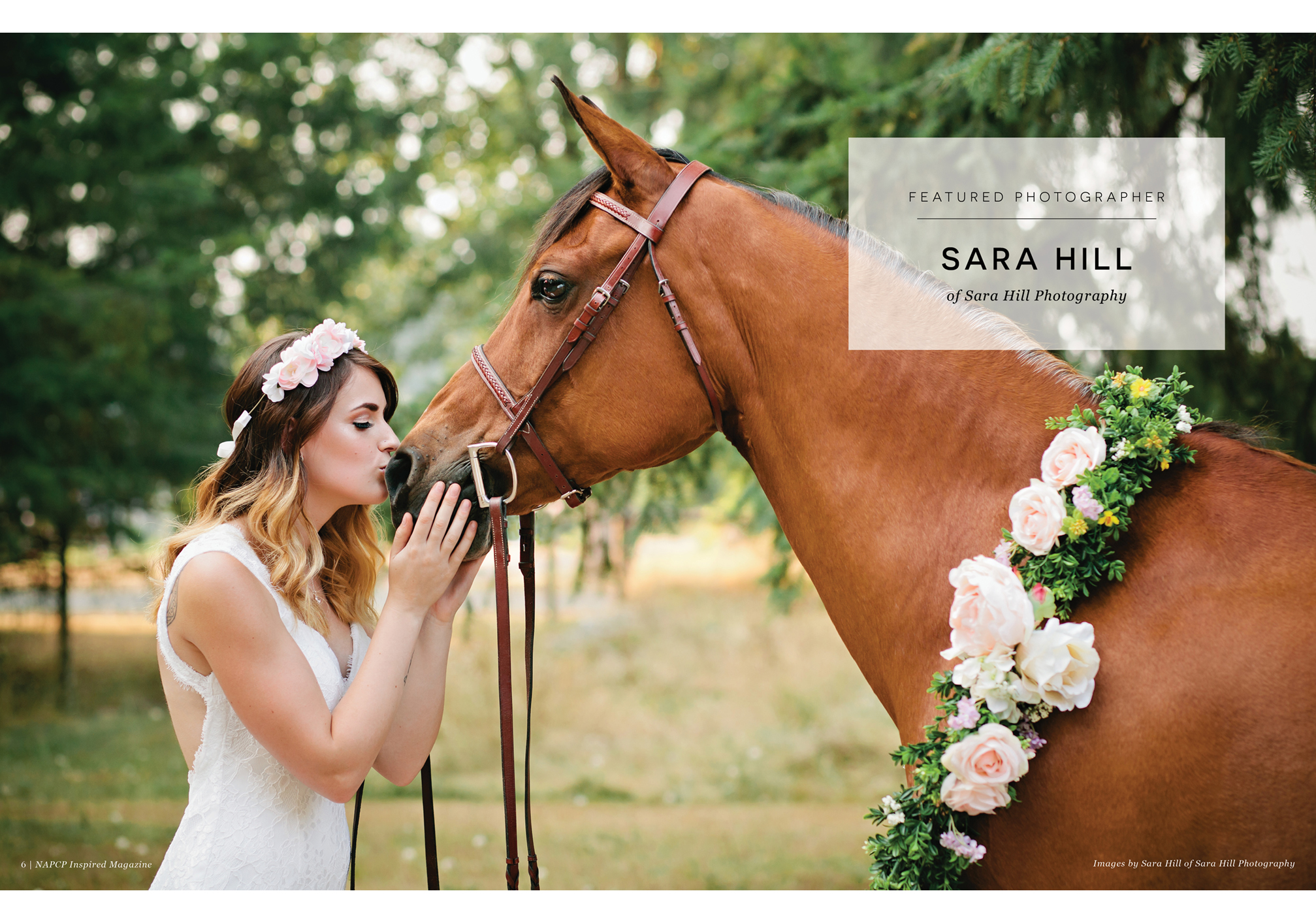 Featured Photographer Sara Hill of Sara Hill Photography