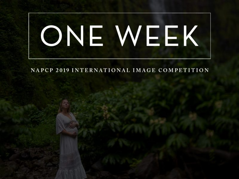 One Week, NAPCP International Image Competition